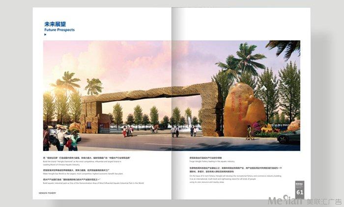 成功案例_宣传画册_成都广告公司-vi画册品牌设计